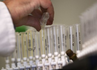 Drug Testing Regulations by State